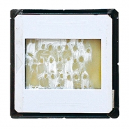 Projected paintings, 2010, oil on diapositive, projection,  4 × 3 cm